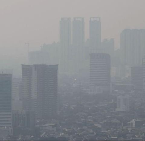 Tìm hiểu bụi mịn PM1.0 và PM2.5 trong không khí ô nhiễm