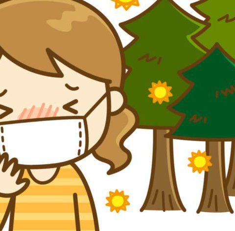 Bệnh dị ứng phấn hoa(花粉症)ở Nhật và những điều cần biết