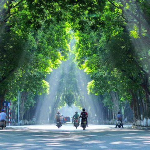 Hành động quyết liệt vì môi trường, không khí sạch