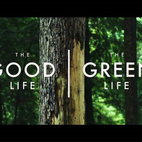 Lối sống xanh là gì? Tại sao phong cách sống xanh lại trở thành xu hướng tương lai?