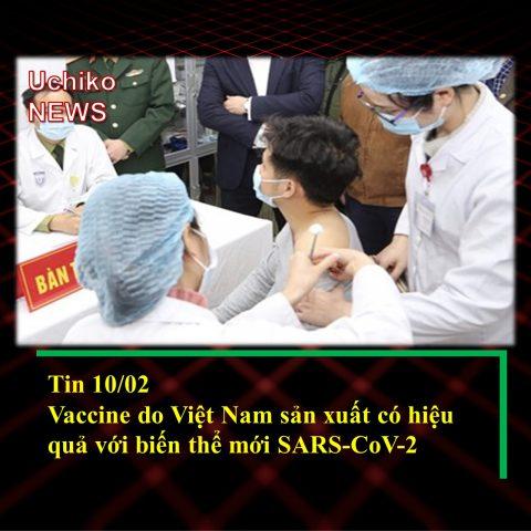 Vaccine do Việt Nam sản xuất có tác dụng với biến thể mới nCoV